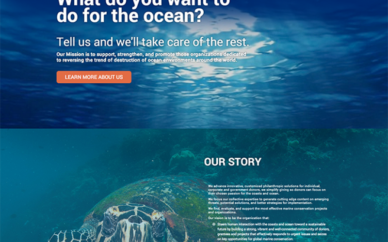 Ocean Foundation home page