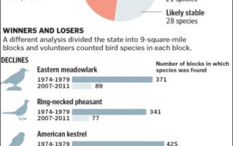 The effects of climate change on birds is a very scary sign.-